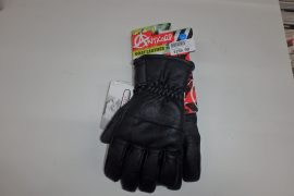 Anticorp Leather Glove